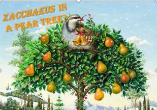 Zacchaeus.PearTree